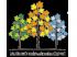 目黒柿の木坂リウマチ・内科クリニックのロゴ画像